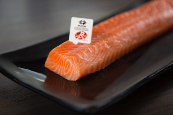 Pure Norwegian Seafood Salmon Fillet