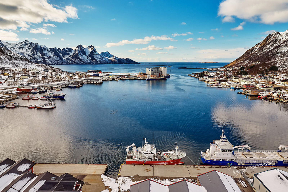 Ståle Nilsen Seafood AS - Norway Exports
