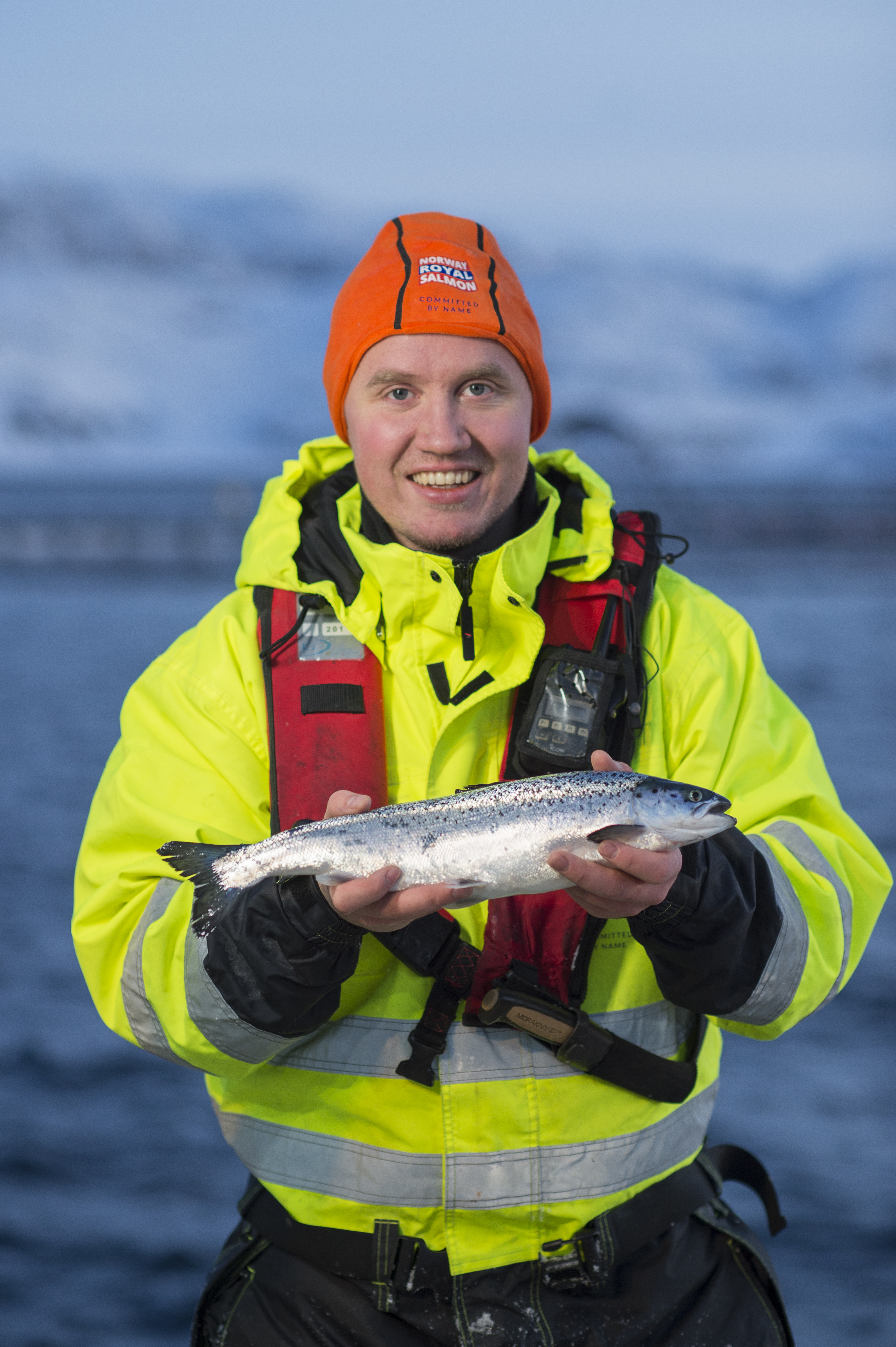 Norway Royal Salmon