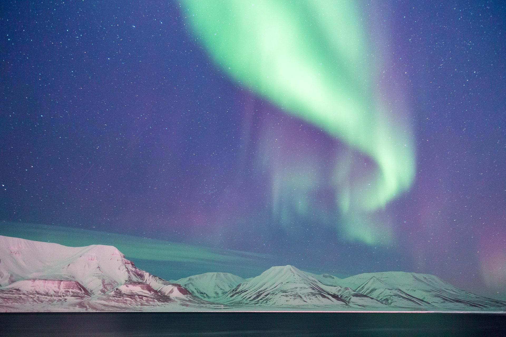 explore norwegian businesses northern light